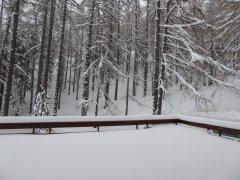 3-ZWi-Terrasse-Winter.JPG
